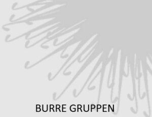 Burre-gruppen